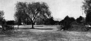 Langara '26